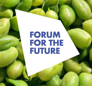 <span>Forum for the Future reports</span><i>→</i>